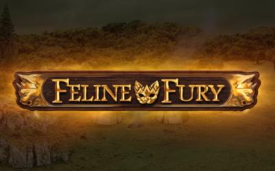Feline Fury Online Pokie