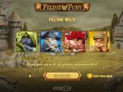 Feline Fury Screenshot 1