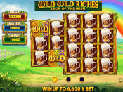 Wild Wild Riches Screenshot 1