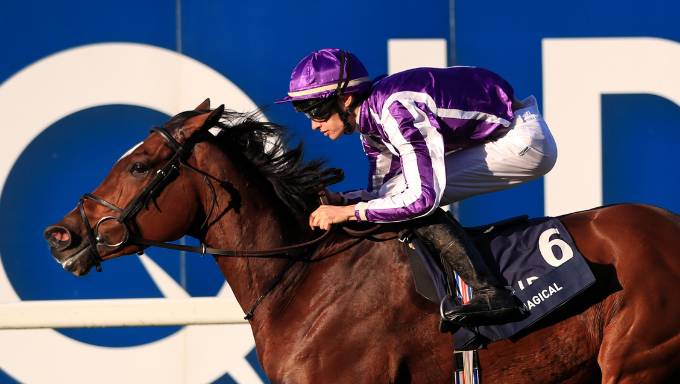 Back Magical At 15/1 To Win The Champions Stakes!