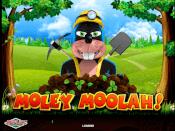 Moley Moolah Screenshot 1