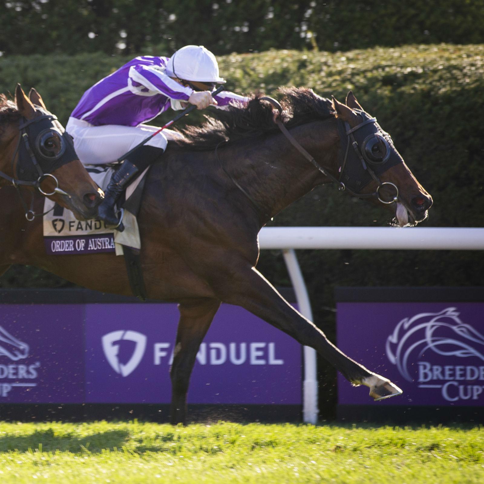 Horse betting online in illinois granada vs bilbao betting tips